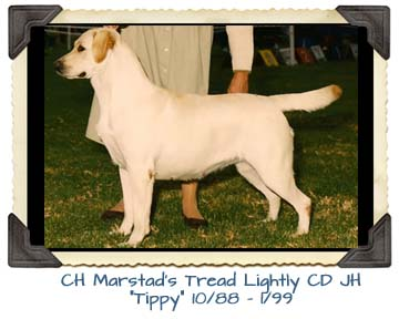 CH Marstad's Tread Lightly CD JH  10/88 - 1/99